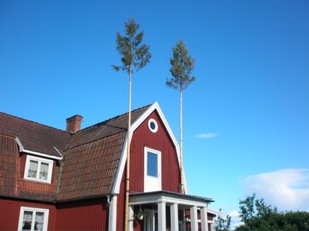sweden-2008-1177